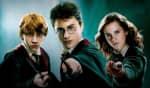 A série live-action segue uma série de polêmicas envolvendo a criadora da franquia, J.K. Rowling