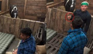 MC Gui e Tiago Piquilo acreditam que o preservativo seja de Nego do Borel, que estaria com o item no bolso durante a festa