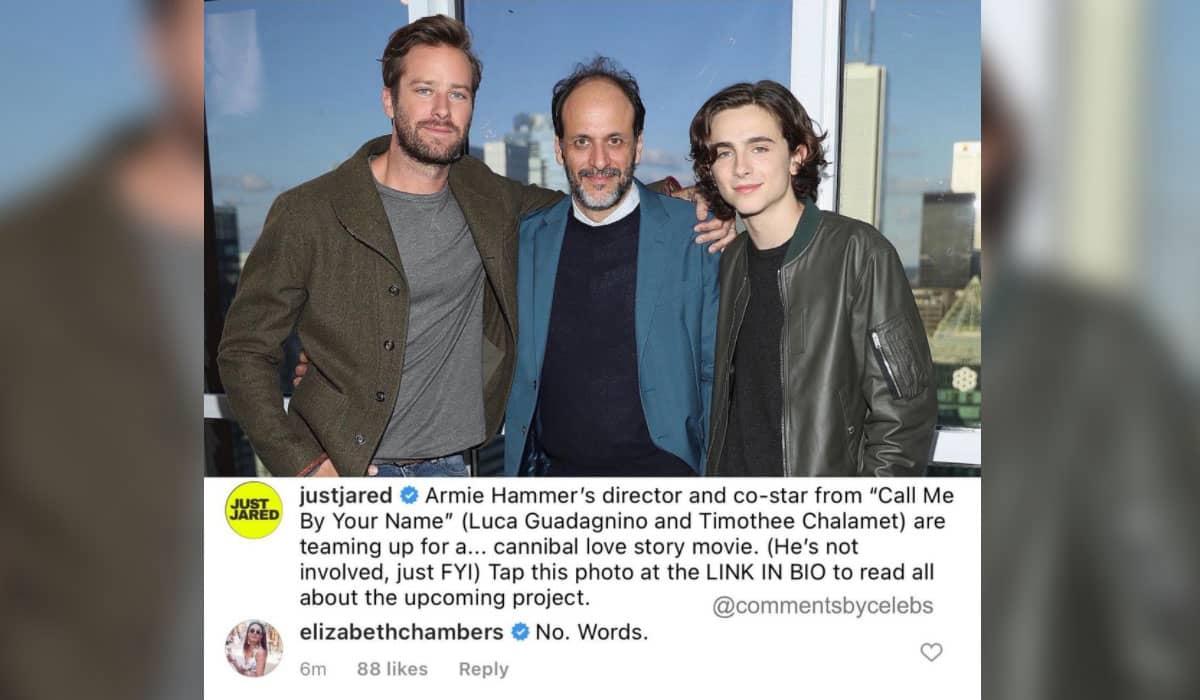Chambers comentou no post que anunciava o novo filme com Chalamet